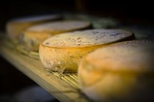 le-beurre-bordier-la-collection-les-familles-de-fromages-les-pates-presses-non-cuite